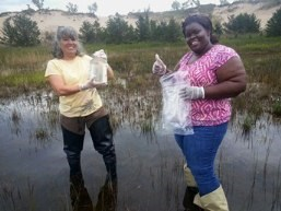 Citizen scientists collect samples from interdunal wetland.