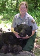 A student intern participates in a bear study.