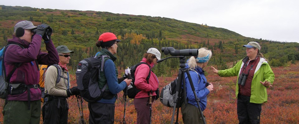 an instructor teaches adults about birding