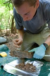 Scientist conducting research in Congaree National Park