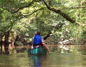 Visitors spend time canoeing on Cedar Creek