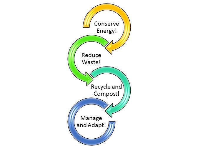 SmartArt graphic featuring four strategies to help the forest: conserving energy, reducing waste, recycling and composting, and managing and adapting to change