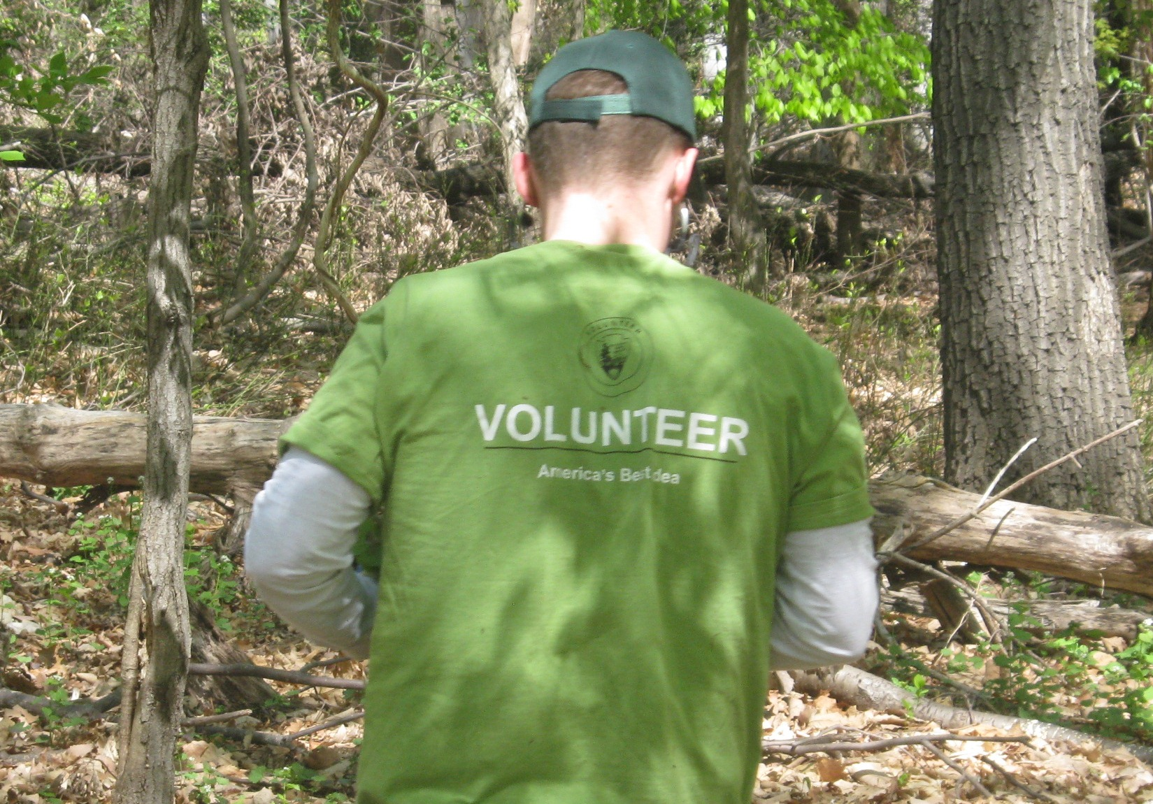 Volunteer in Rock Creek Park