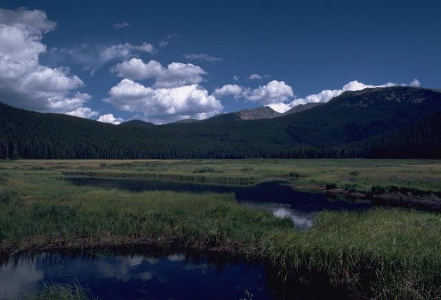 a photo of Big Meadows