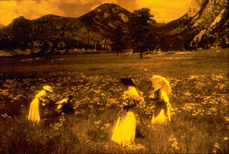 a vintage photo of picking flowers in Rocky Mountain National Park