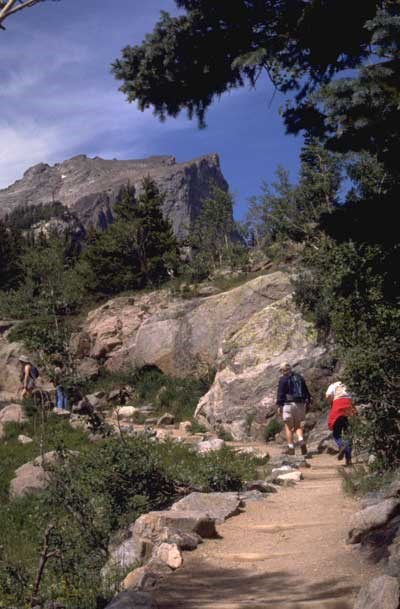 a photo of elements of historic trails