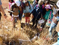 Students discover an elk skeleton in the field