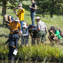 A group of people inventories a pond during BioBlitz 2012