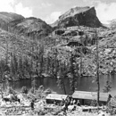 Bear Lake area after the 1900 fire