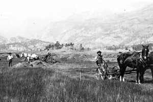 Farmers haying Moraine Park in the 1880's
