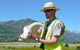 A ranger shows the public a bighorn sheep skull
