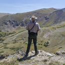 Ranger overlooks the alpine tundra