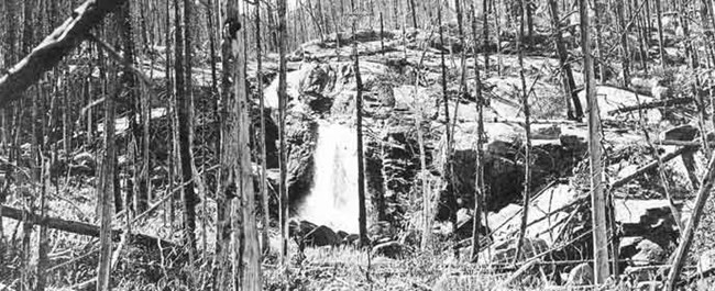 Alberta Falls after the 1900 fire