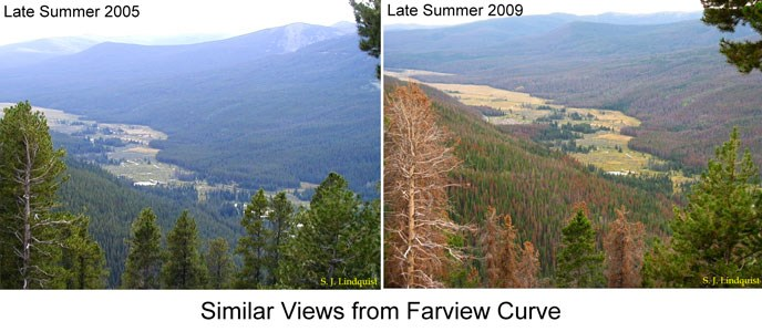 Comparison photos of Kawuneeche Valley in 2005 and 2009
