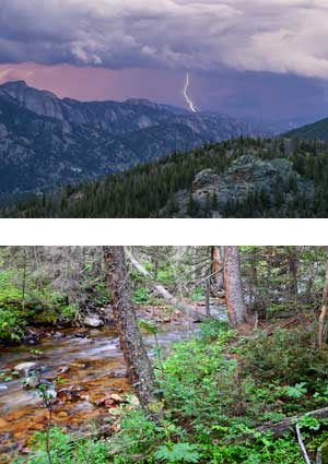 Lightning strike on Lumpy Ridge, Forest canyon floor with river