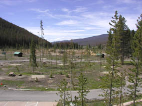 Photo Timber Creek Campground after beetle-killed trees were removed.