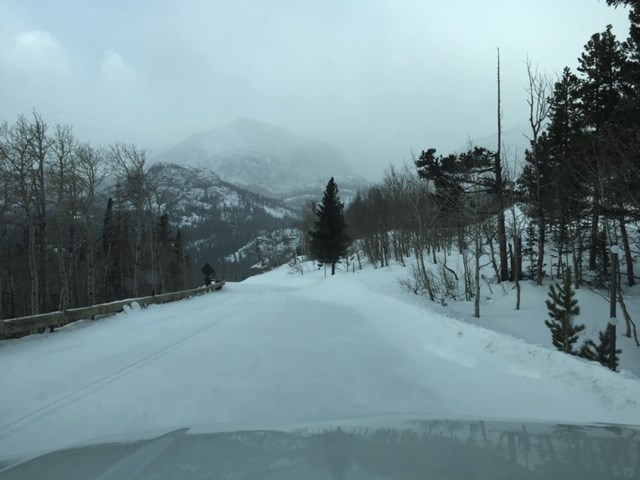 Bear Lake Road covered in a layer of new snow.