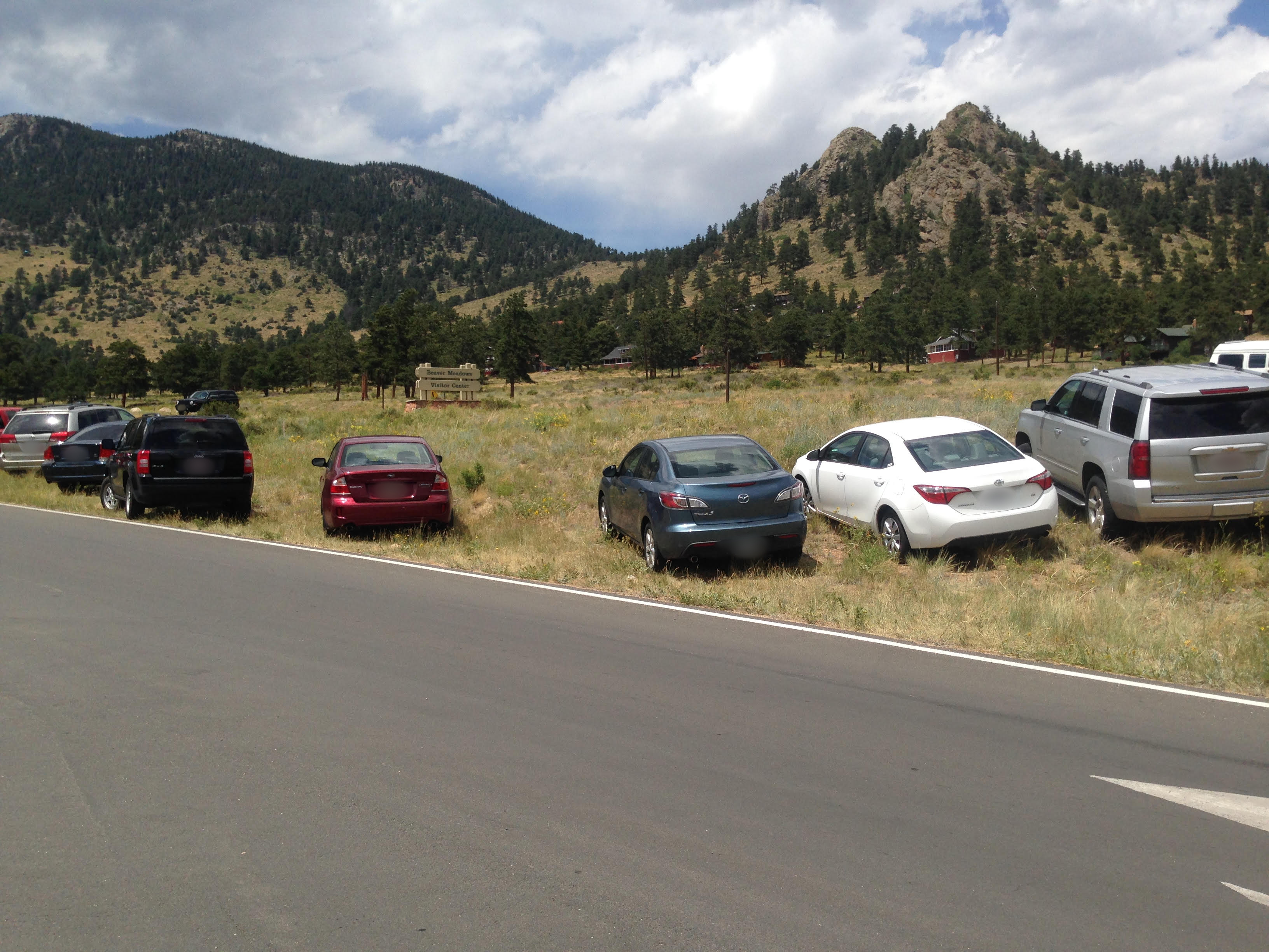 Illegal parking on native vegetation at Beaver Meadows Visitor Center