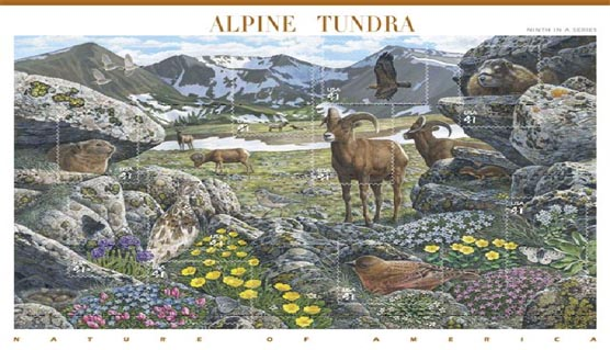 Photo of Alpine Tundra Stamp