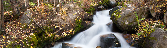 A stream cascade in an autumn forest