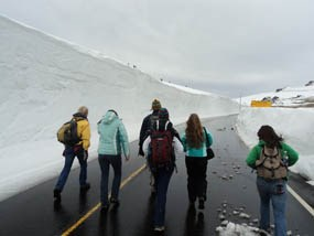 Photo Backcountry Office staff hike Trail Ridge Road with 20-foot plow cuts