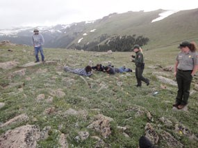 Students getting down to take a close look at the alpine tundra.