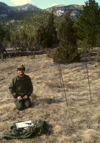 Photo of a crew member surveying an upland herbaceous plot in Cow Creek.