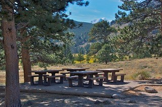 Hollowell Park picnic area 320X212