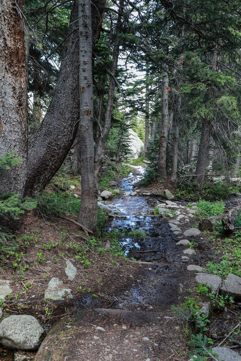 Trail Conditions - Rocky Mountain National Park (U S  National Park