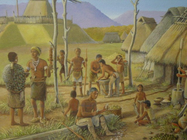 Mississippian Village