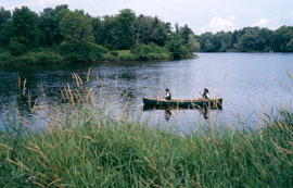 The river edged by trees and grasses, with a canoe and two women paddling