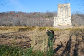 With a stone pillar and bare trees in the background, a ranger collects seeds from the top of a tall clump of cord grass.