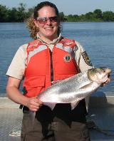 USFWS employee wearing a lifejacket holds a silver carp