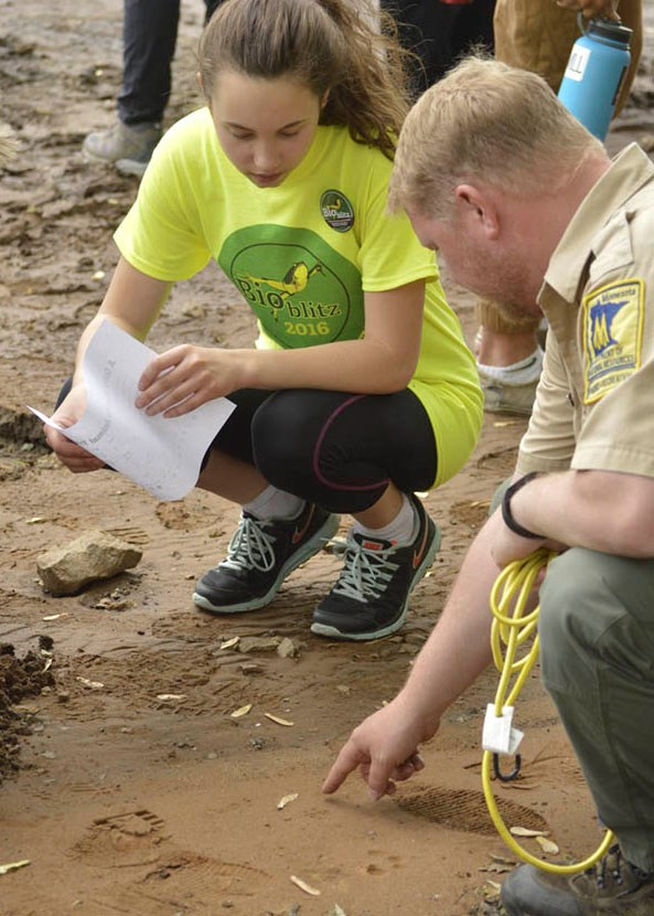 A biologist and student look at tracks on the ground.