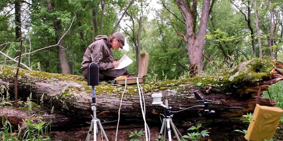 A woman sits on a large log in a forest collecting data from machines.