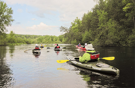 People in kayaks paddle through a wooded landscape.