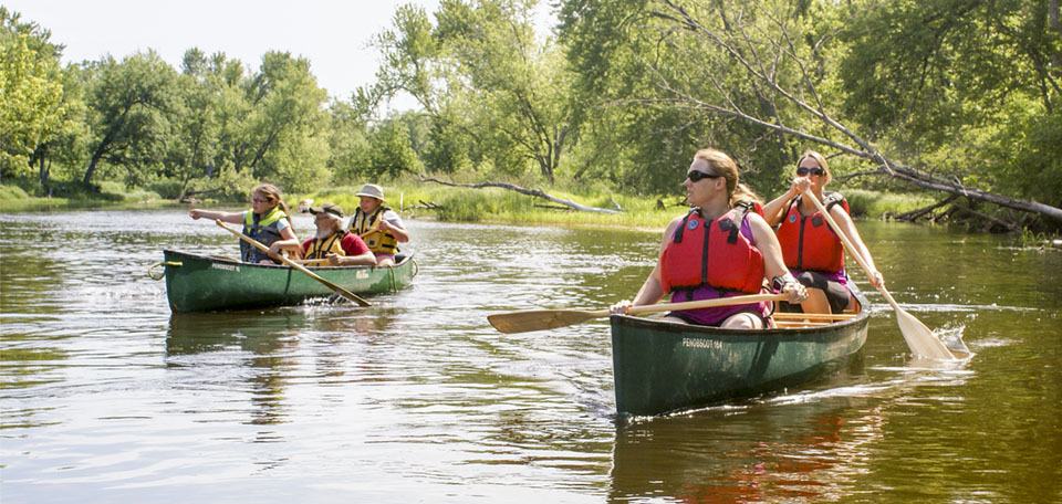 People in two canoes paddle and point towards sightings on a river.