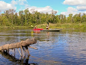 Two kayakers paddle past a log in a river.