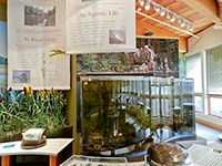 Exhibits including an aquarium in a visitor center.