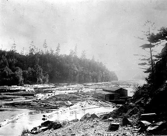 An image taken in the Dalles late in the logging era, showing a wannigan amid a river full of St. Croix logs. MNHS photo