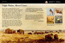 High Plains Short Grass exhibit