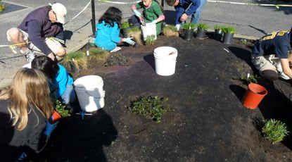 Elementary school children planting California native plants at the park.