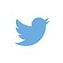 The Twitter logo -- a little, blue bird.