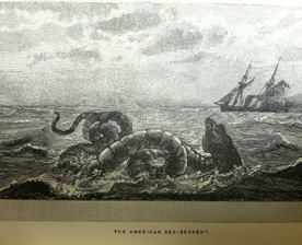 American Sea Serpent from: Monsters of the sea, legendary and authentic