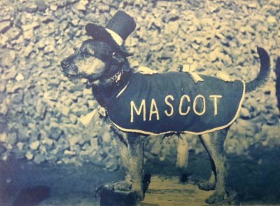 A small dog standing and wearing a coat with the words MASCOT written on it and a jaunty hat on his head.