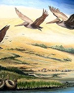 A mural showing flying pelicans and a marshy shoreline.