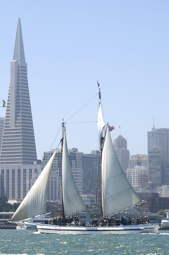 Scow schooner ALMA sailing on San Francisco Bay with downtown SF and the Transamerica building visible in the backgound.
