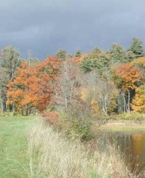 Fall colors at the Blow-Me-Down Pond, Saint-Gaudens National Historic Site