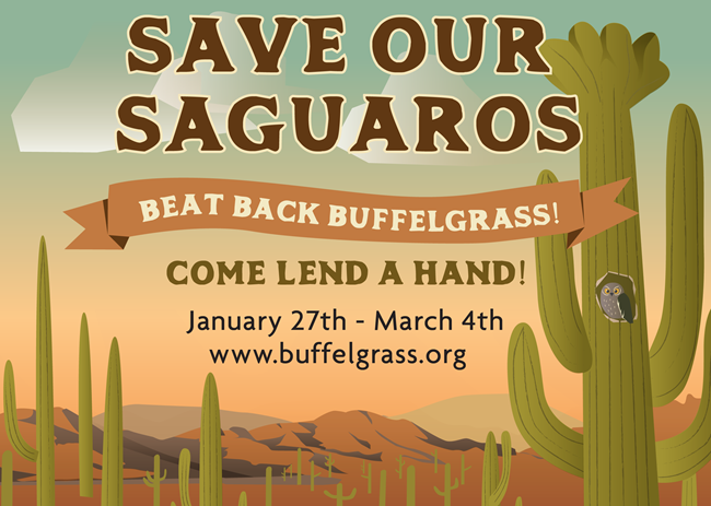 Save Our Saguaros