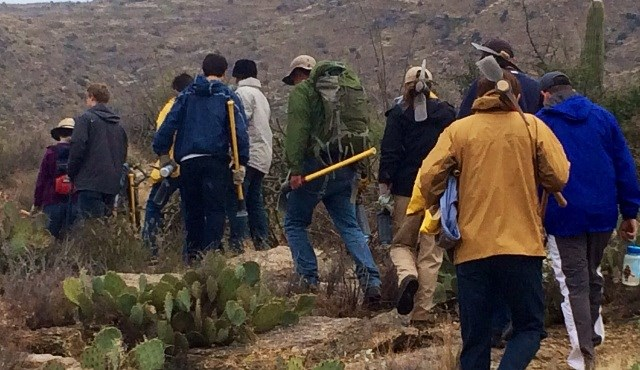 Volunteers Hiking to Pull Buffelgrass